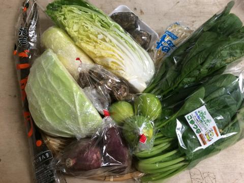 10月13日野菜