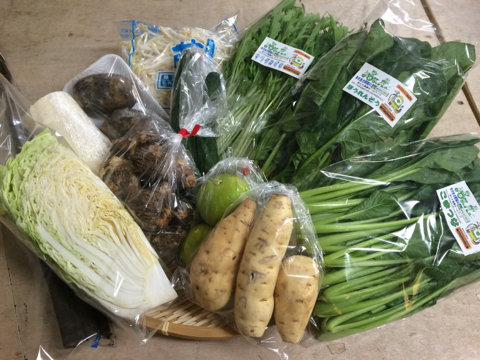 10月20日野菜