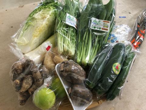 10月22日野菜