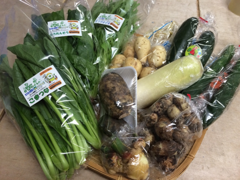 10月26日野菜