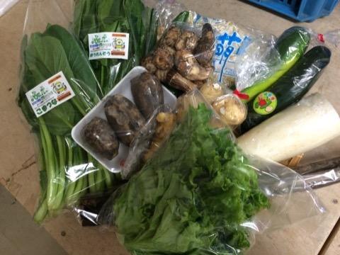 10月29日野菜
