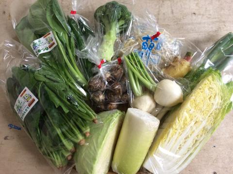 11月10日野菜