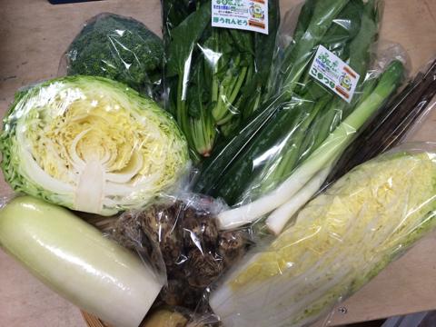 11月12日野菜