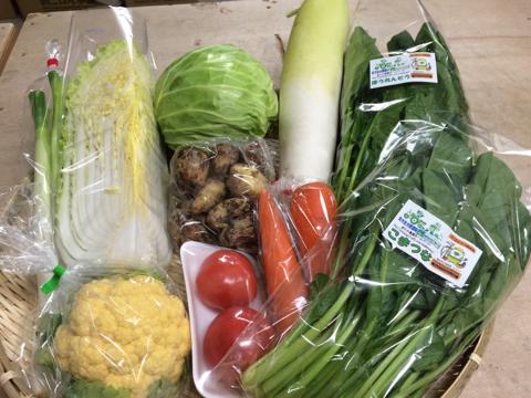 12月1日野菜