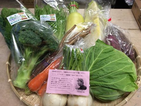 12月15日野菜