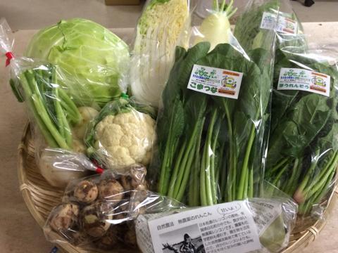 12月4日野菜