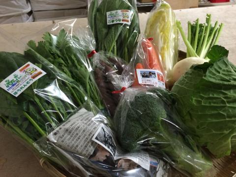 1月5日野菜