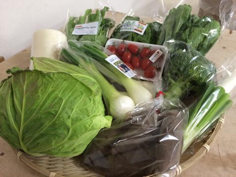 2月26日野菜