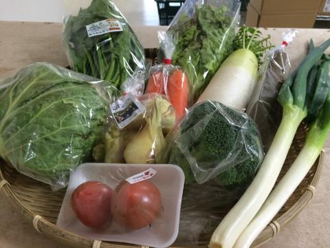 3月25日野菜