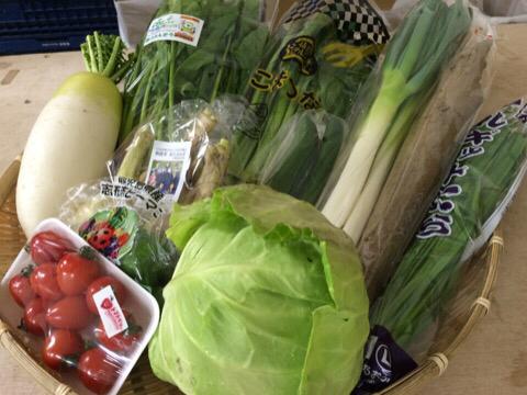 3月31日野菜