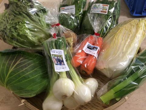 3月4日野菜