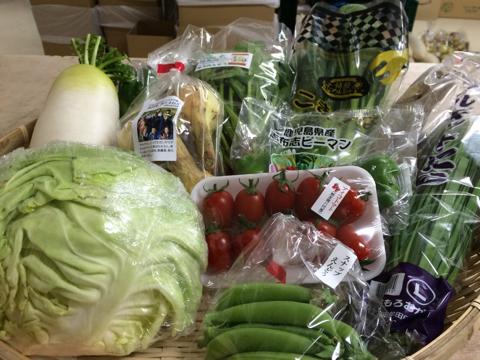 4月1日野菜