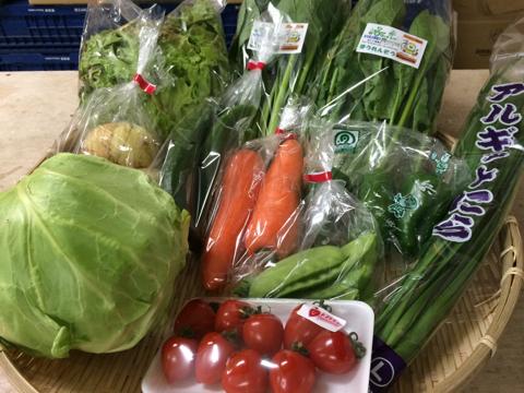 4月14日野菜