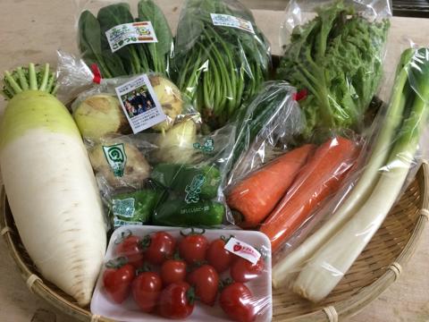 4月15日野菜