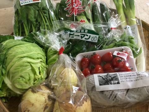 4月8日野菜