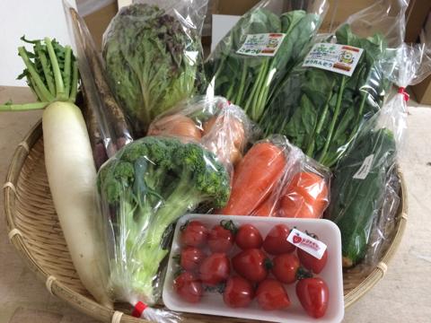 5月27日野菜