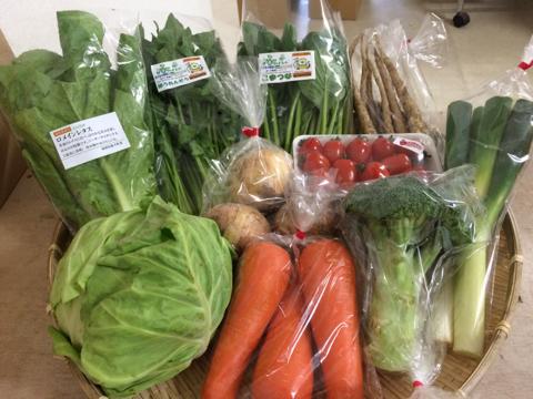 5月13日野菜