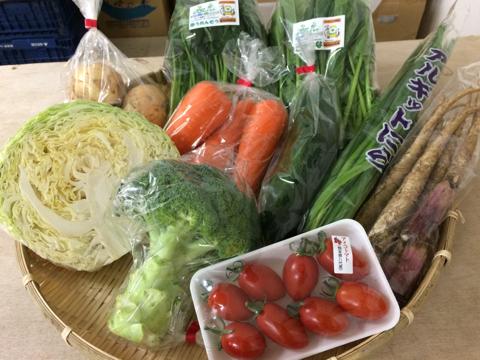 5月17日野菜