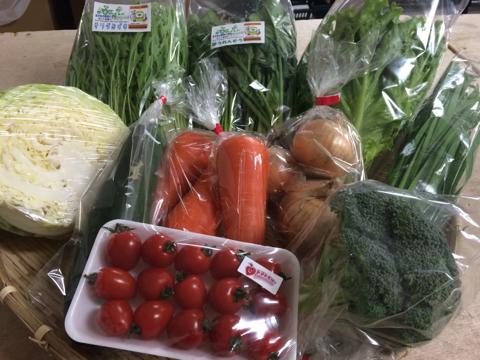 5月24日野菜
