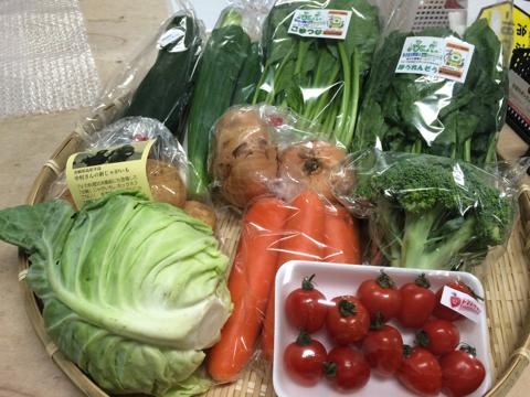 5月30日野菜