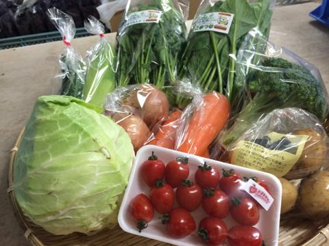 6月1日野菜
