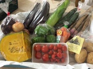 7月22日野菜