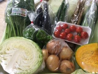 8月1日野菜