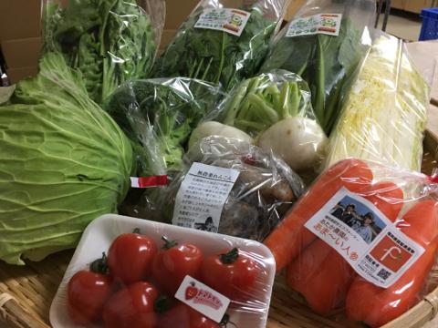 1月30日野菜