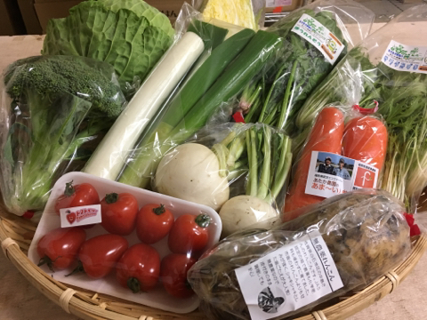 1月31日野菜