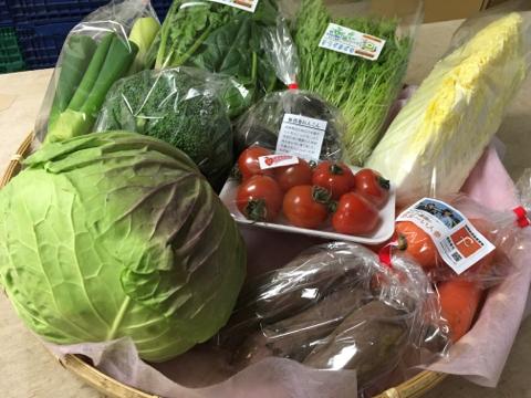 2月9日野菜