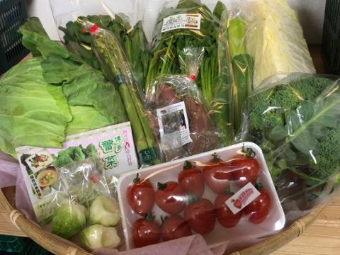 3月10日野菜