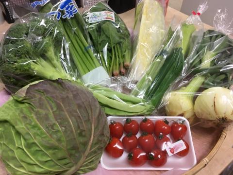 3月13日野菜