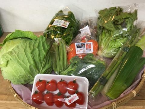 3月24日野菜