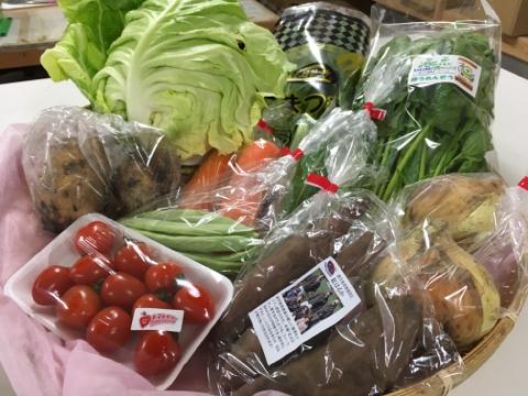 4月13日野菜