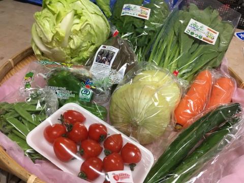 4月18日野菜