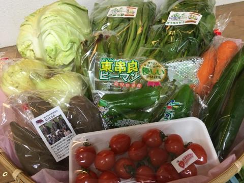4月20日野菜