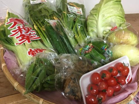 4月21日野菜