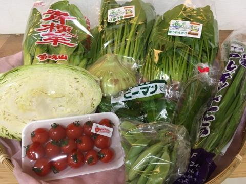 4月27日野菜