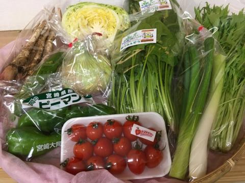 4月28日野菜