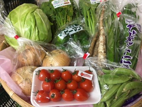 5月1日野菜