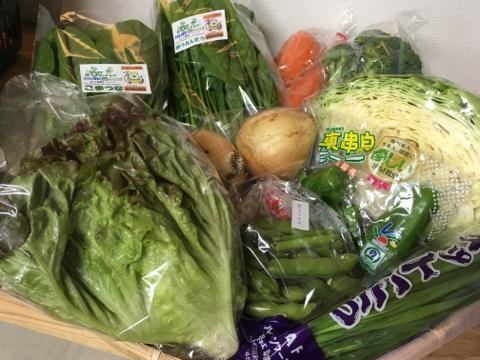 5月19日野菜