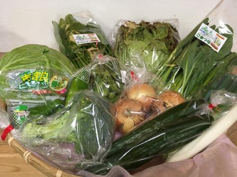 5月22日野菜