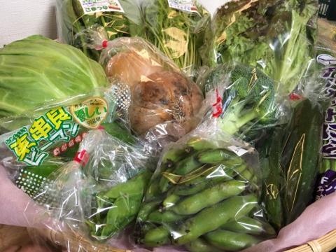 5月23日野菜