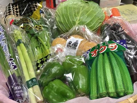 7月28日野菜