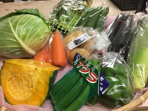 7月31日野菜