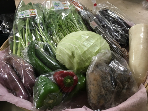 9月25日野菜