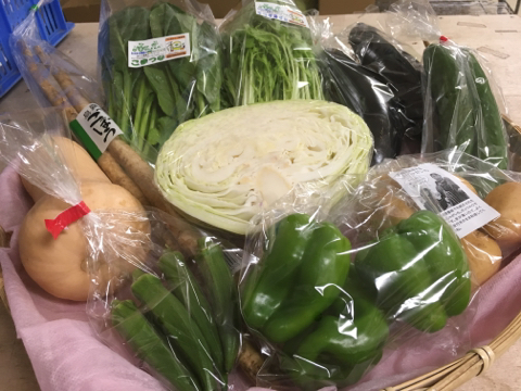 9月7日野菜