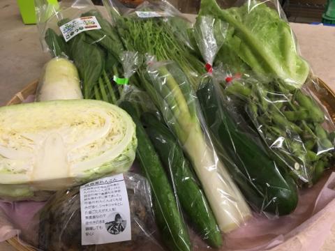 10月23日野菜
