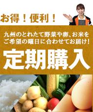 朝ごはん本舗 定期購入 九州のとれたて野菜や卵、お米をご希望の曜日に合わせてお届け!